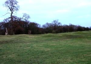 Site of Medieval Village