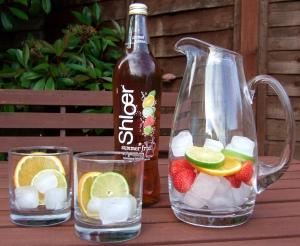 Shloer Summer Fruit Punch
