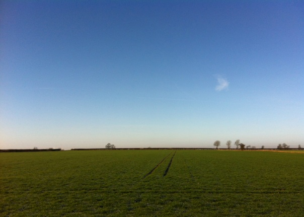 Lincolnshire View
