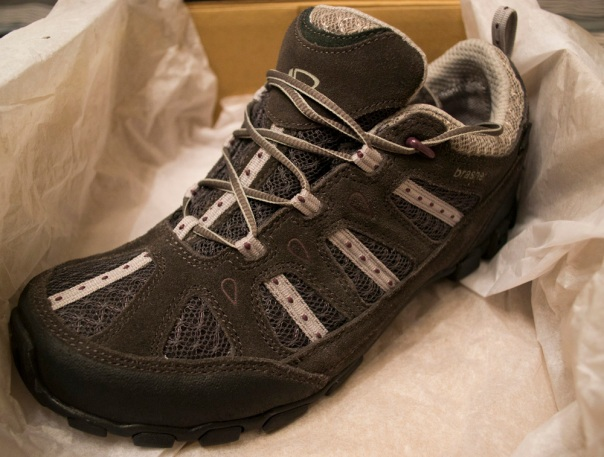 Brasher Roam GTX Travel Shoes
